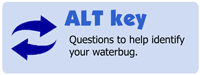 link to ALT key